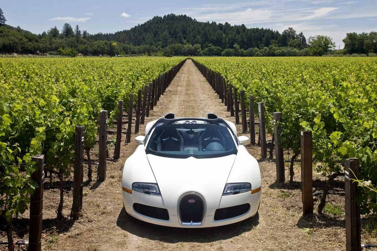 Bugatti Veyron Grand Sport - www.hartvoorautos.nl
