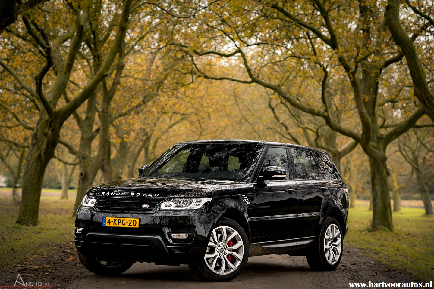 Range Rover Sport 5.0 V8 Supercharged - www.hartvoorautos.nl