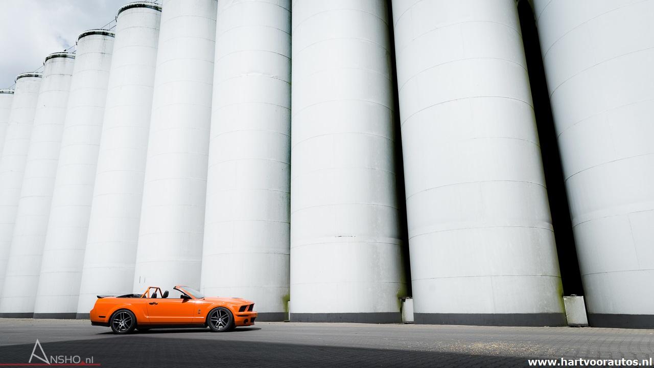 Mustang Shelby GT500 - www.hartvoorautos.nl