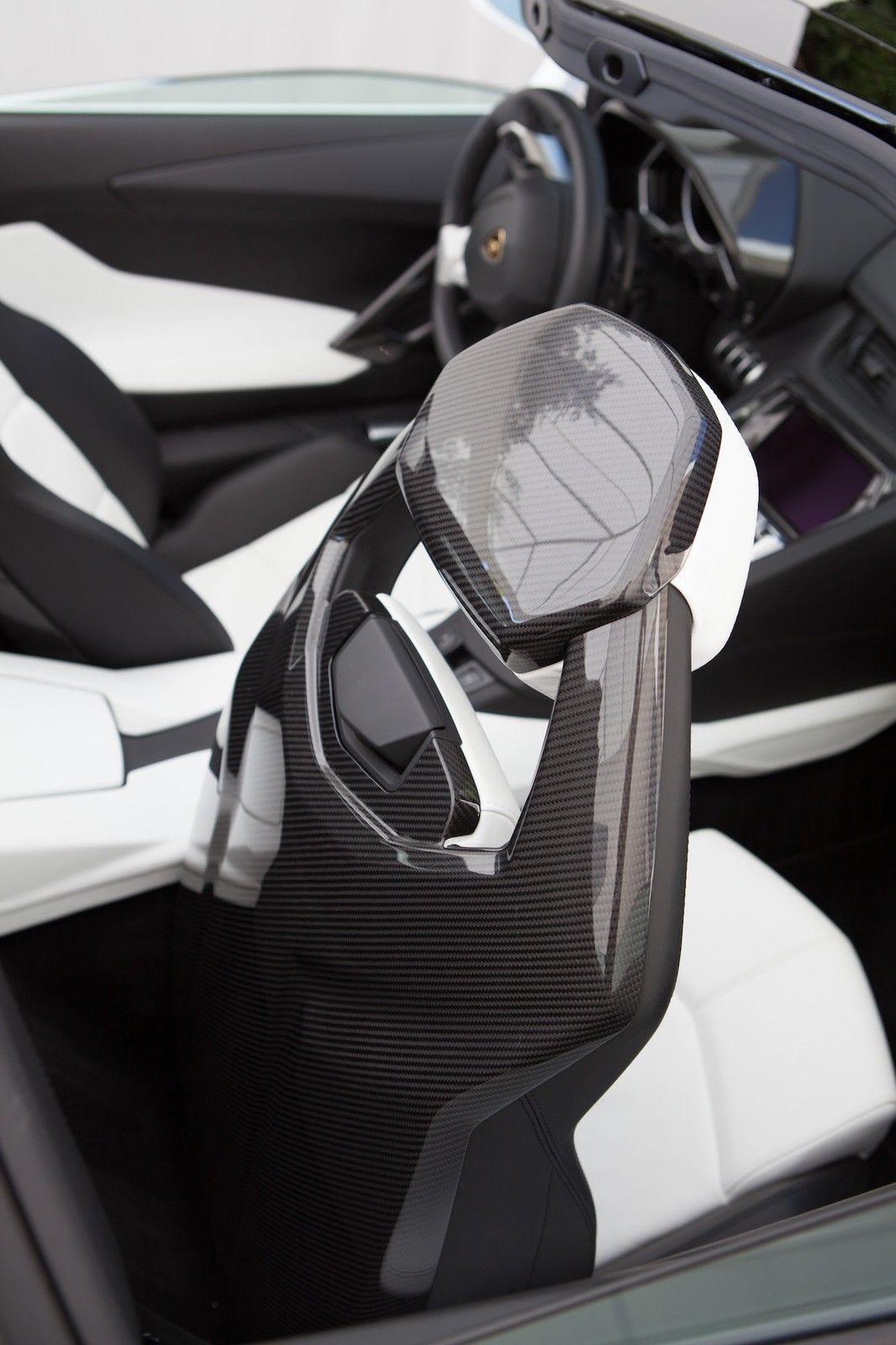 Lamborghini Aventador Roadster Dan Bilzerian